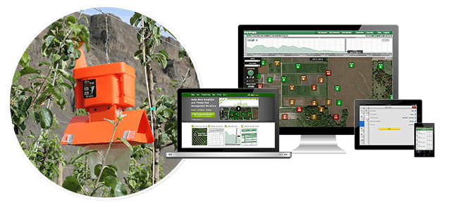 Wireless Pest Monitoring: MyTraps