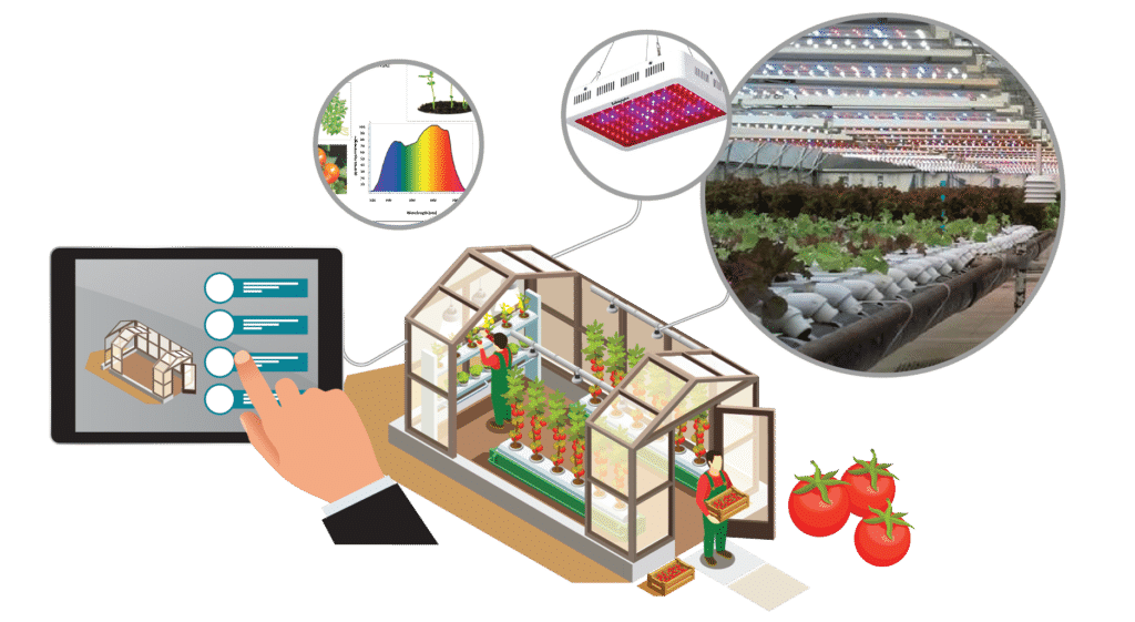 Smart Greenhouse Lighting Inforgaphic