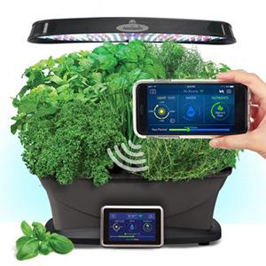 AeroGarden Bounty Wifi Image