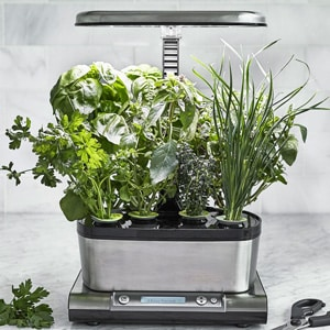AeroGarden Harvest Elite WiFi Image