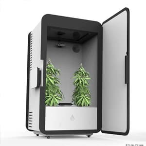 Leaf Grow Box
