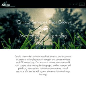 Qualia Networks Logo