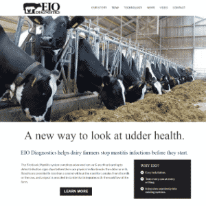 EIO Diagnostics Logo