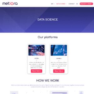 Metiora Logo