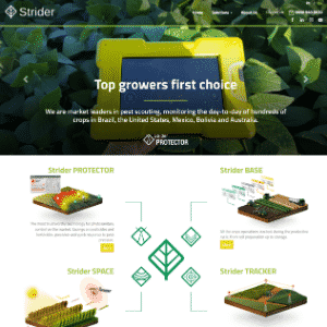 Strider (Acquired by Syngenta) Thumbnail