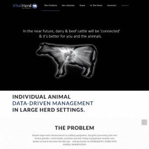 Vital Herd Logo