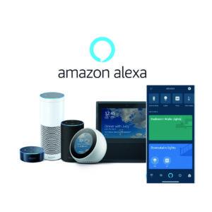 Alexa Ecosystem