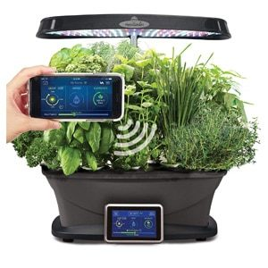 Top Indoor Automatic Herb Gardens | 2019 devices and reviews for