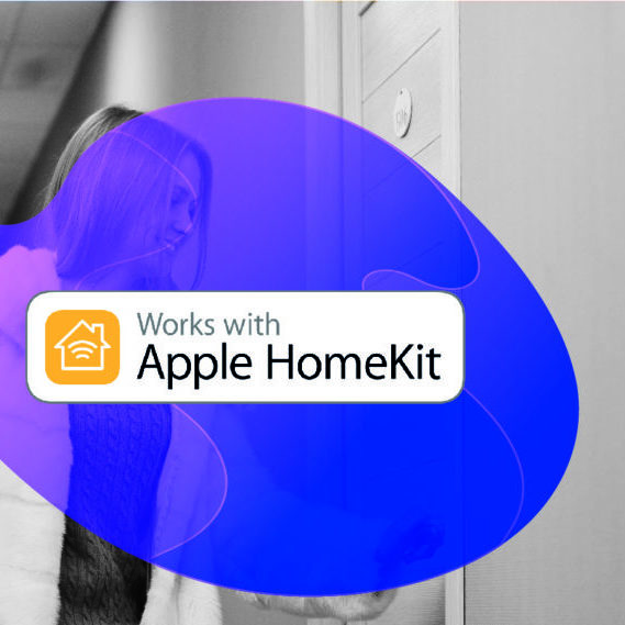 Homekit Lock Icon